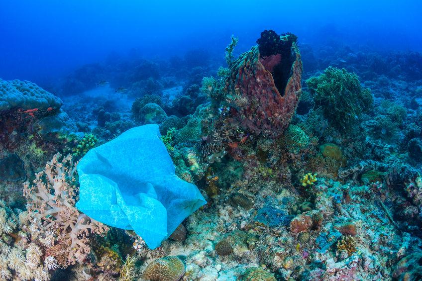 Oceancom Bracelet Pound Of Trash Pounds Removed - 4ocean