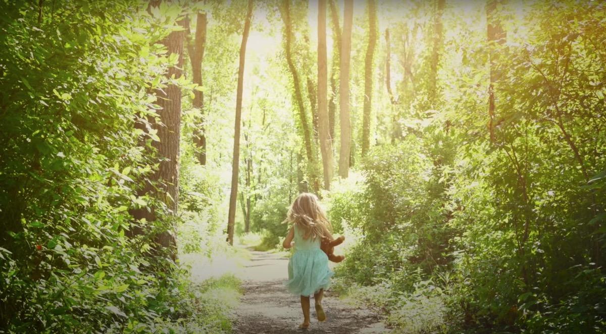 Le conte du voyage aventureux des enfants de la lumière, par Catharina Roland