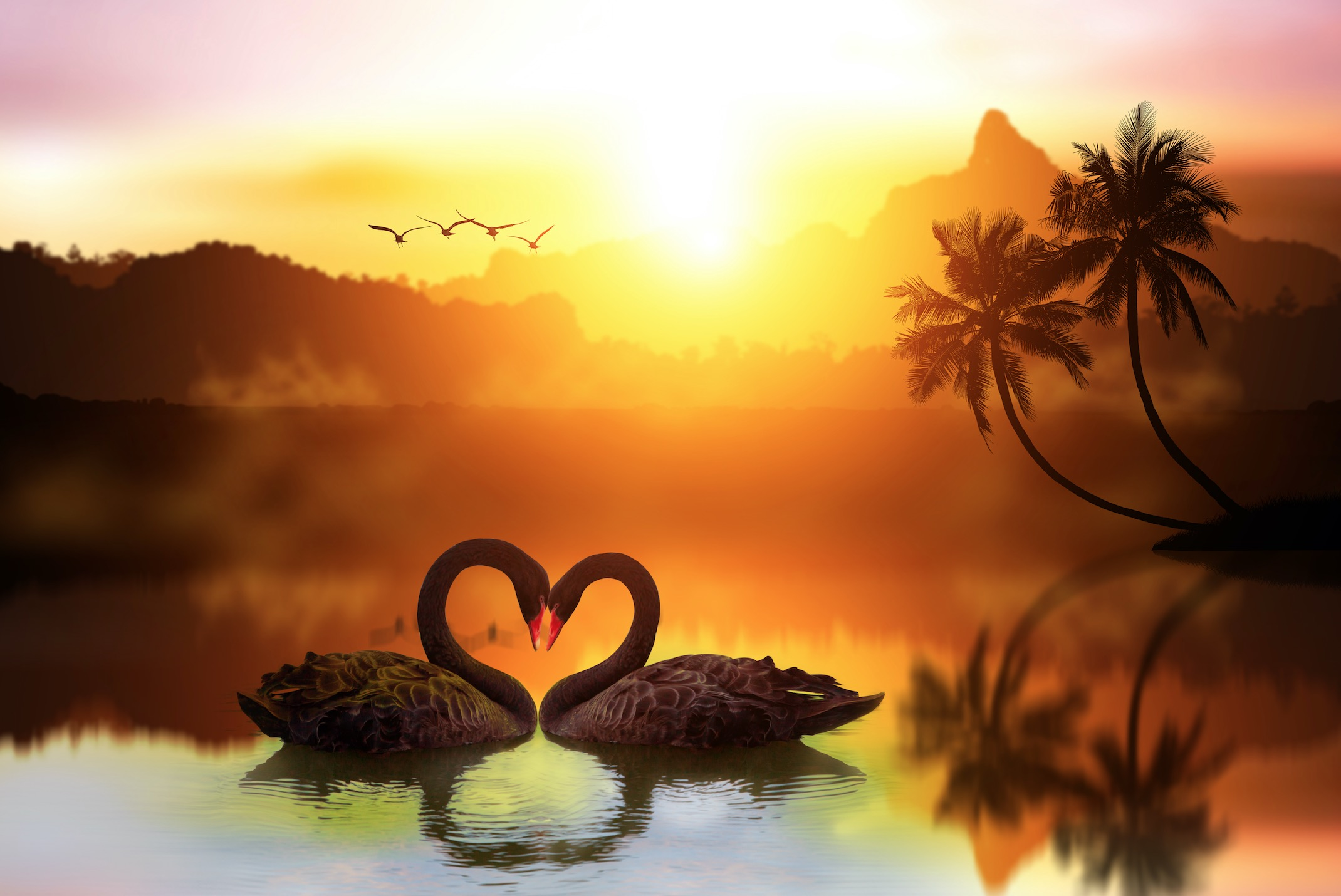 """Liebe ist… """"das, was im Universum unbegrenzt vorhanden ist"""". Christina von Dreien"""