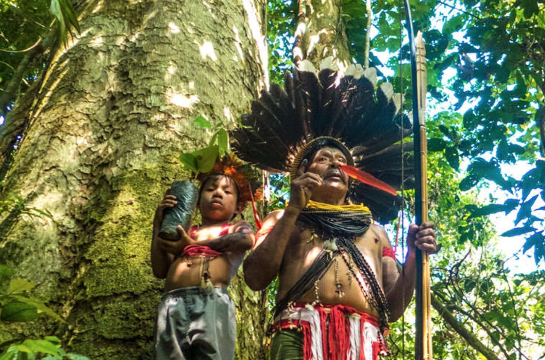 Aquaverde – La protection de la forêt primaire amazonienne est primordiale pour l'humanité