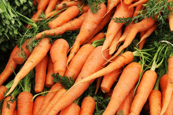 Faire ses courses au marché : écologique, économique et convivial !