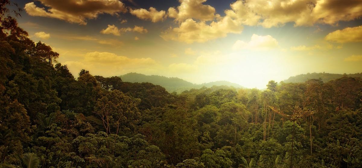 Au cœur des temps – Wenn die Erde uns zum handeln auffordert, vom 9. Bis 17. Mai in Leysin (CH)