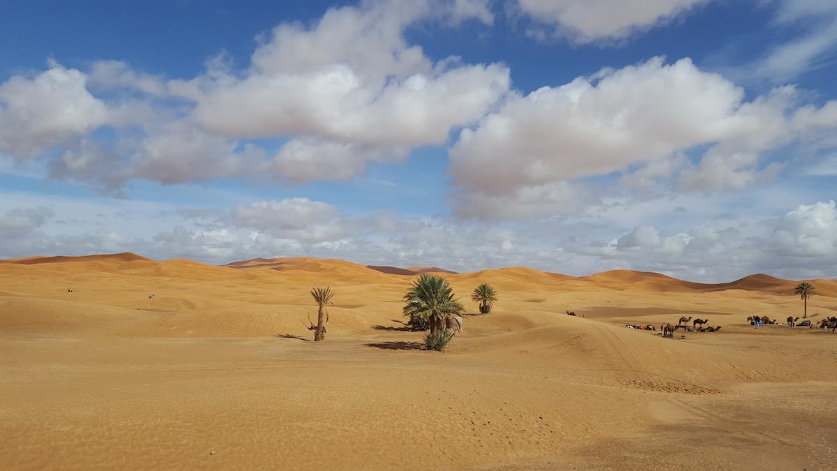 Karawanserail – das Seminarhaus in der Wüste