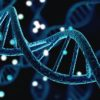 Impact des vaccins à ARN