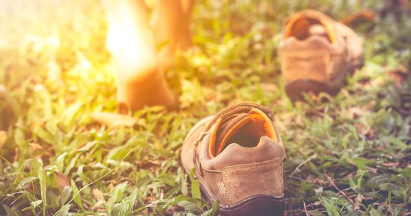 Zieht eure Schuhe aus, wenn Ihr gesund sein wollt. Die Wissenschaft der Erdung.