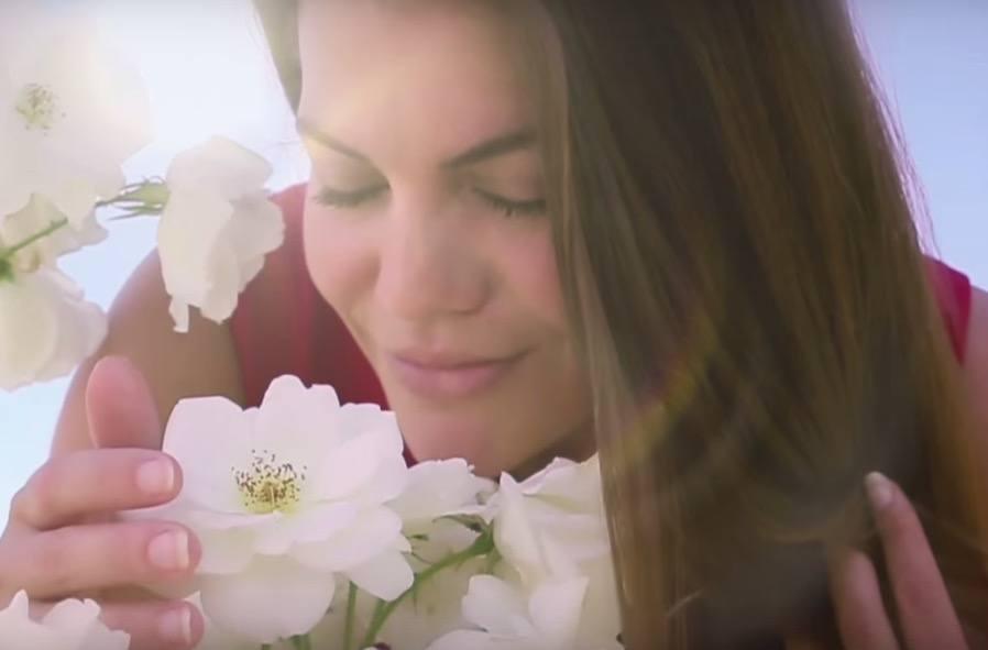 Emotionen – eine Filmdokumentation