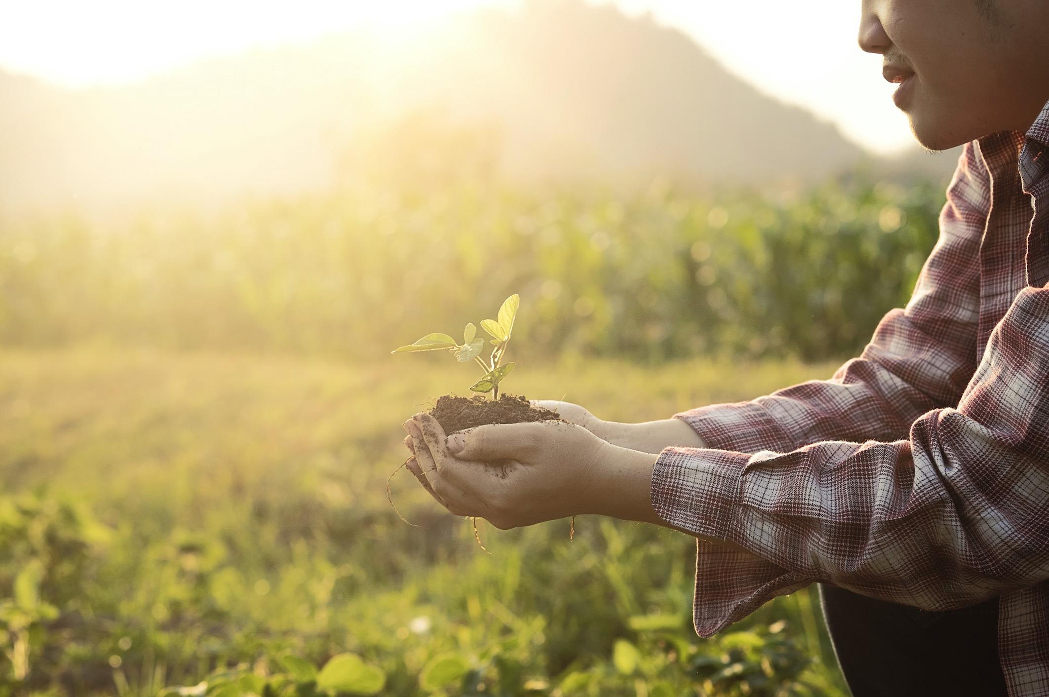 Lebendige Nahrung zu einer Priorität in unserem Leben machen. Zum Wohle des Planeten