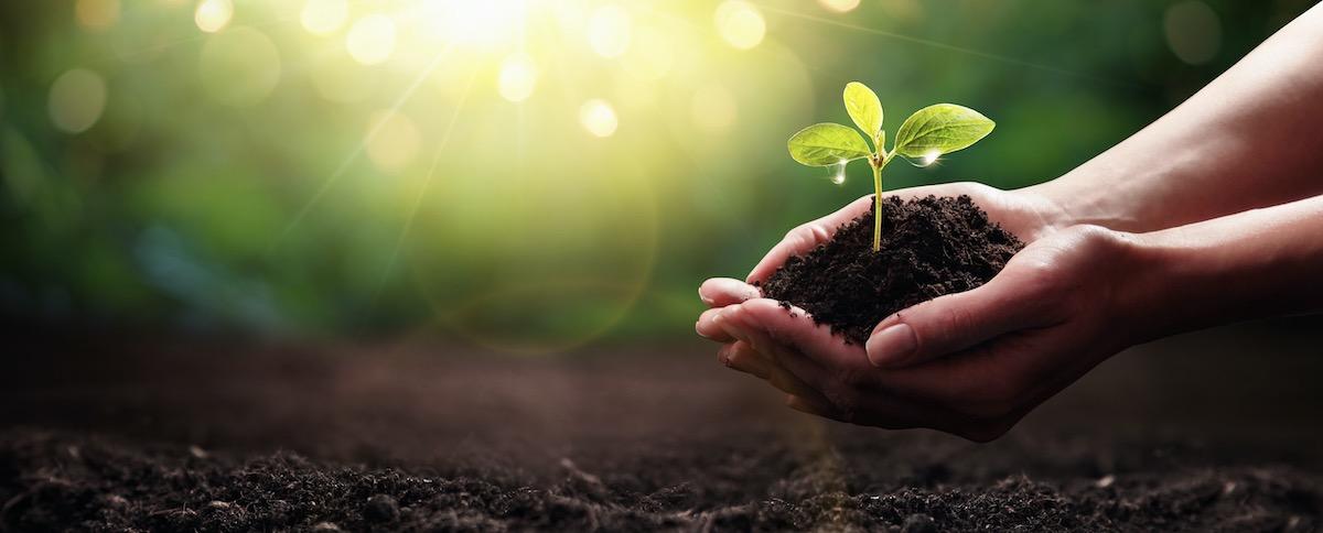 Nous cultivons la vie – l'événement humus. Du 7 au 10 octobre à Leipzig (DE)