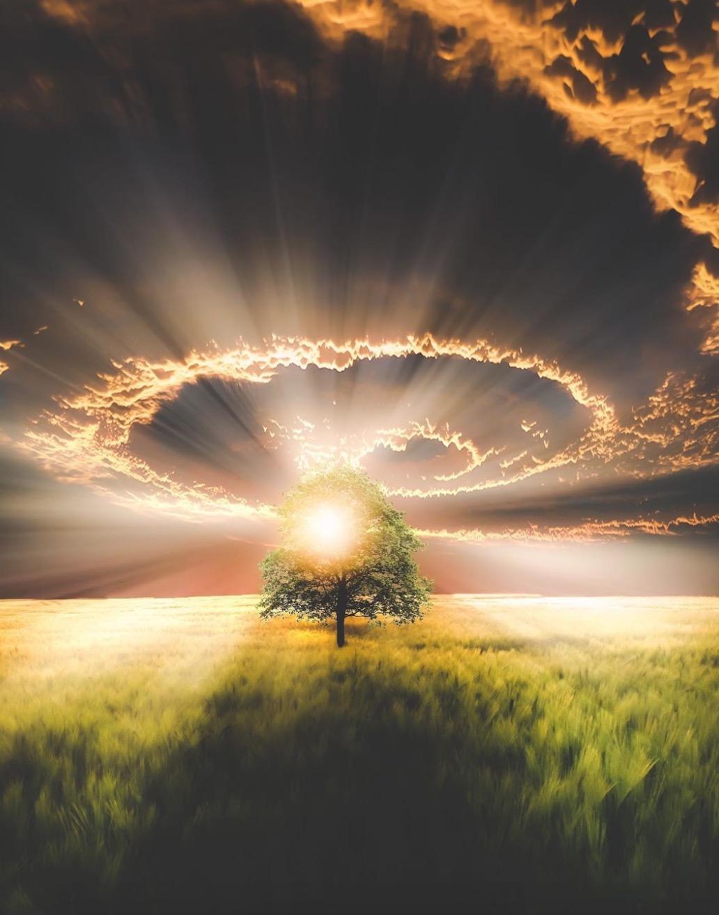 La nature nous a tout donné