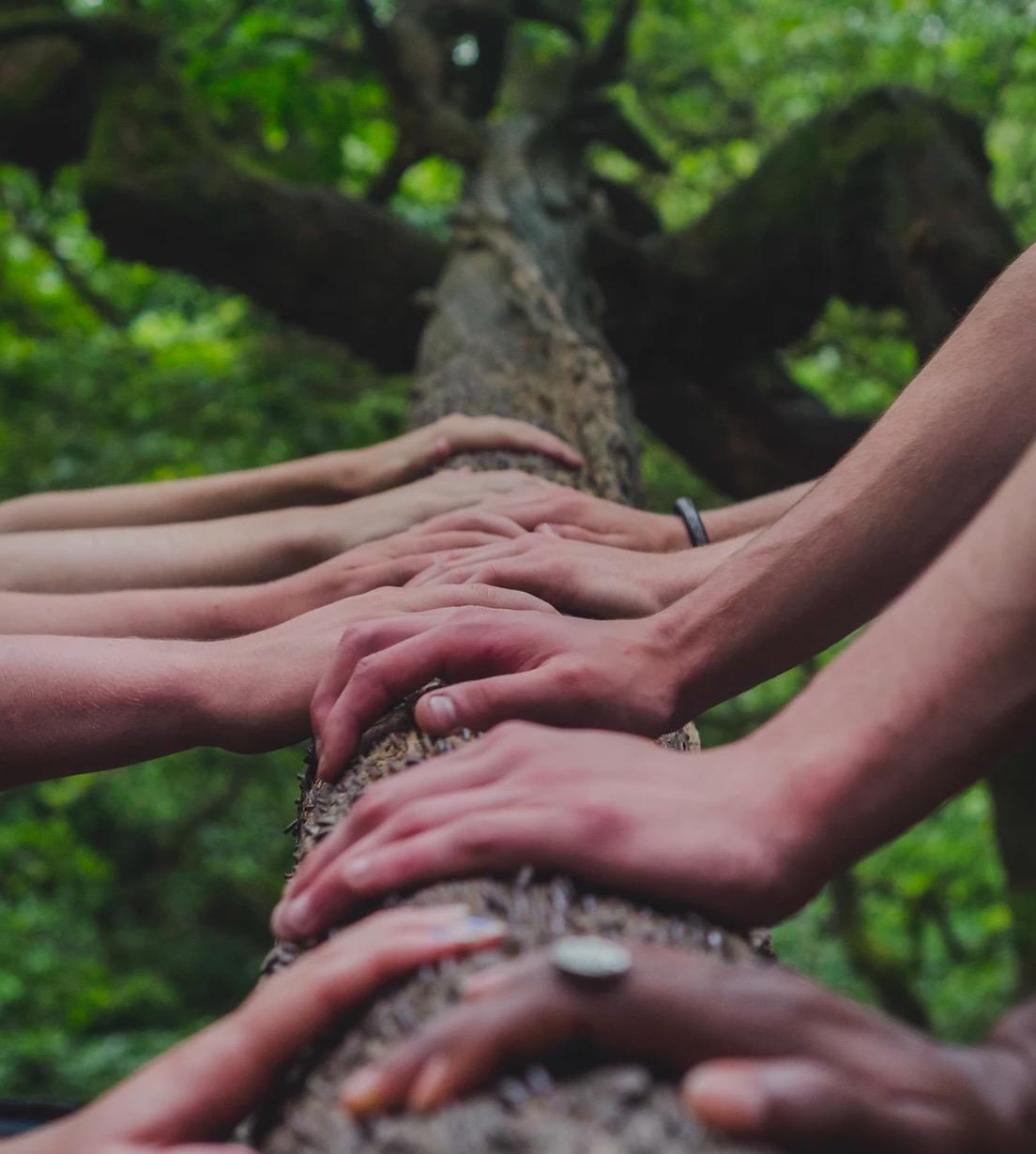 Que pouvons-nous faire ensemble pour notre Terre maintenant ? Le manifeste de la Nouvelle Terre