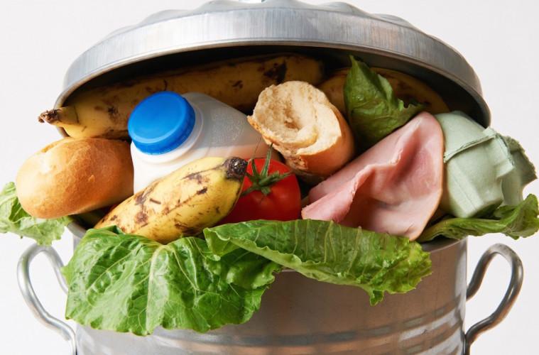 Wir könnten mit unseren täglichen Lebensmittelabfällen 3 x die 3. Welt ernähren
