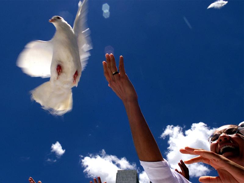 Nous sommes en paix. Mars 2020