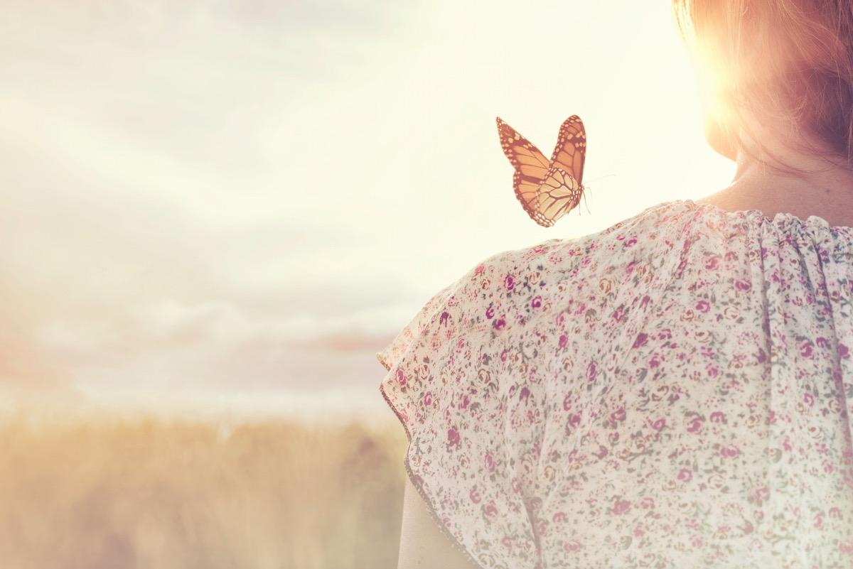 Pour créer une nouvelle société, devenons des papillons