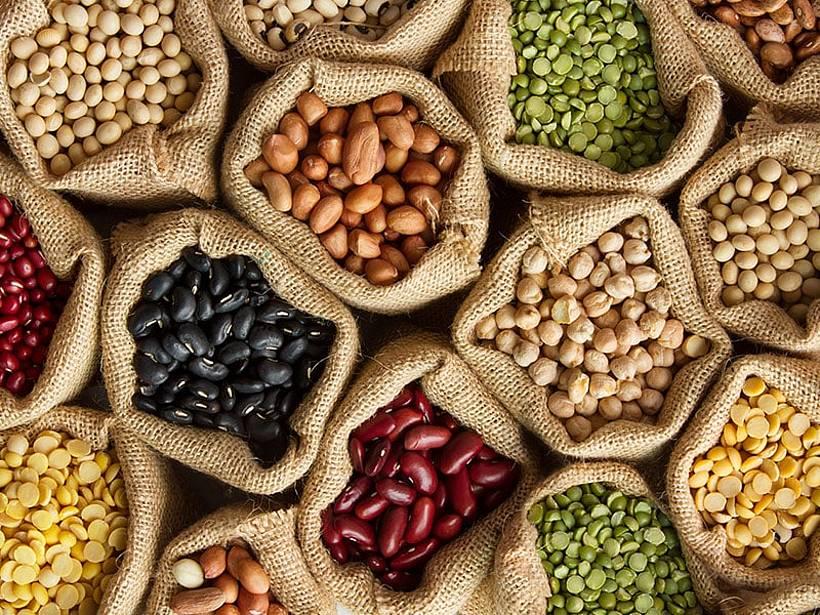 Petition Saatgutmarkt öffnen. Bitte unterschreiben.