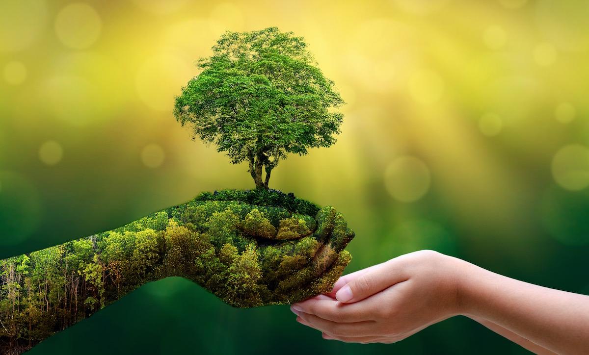 Der 15. März ist ein grosser Tag für Mutter Erde. Der Wandel kommt. Wir sind der Wandel, wir, das Volk