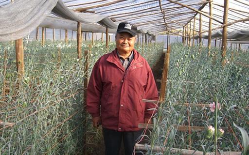 Geniale EM-Technologie ermöglicht pestizidfreie Landwirtschaft und Waschen ohne Waschmittel!
