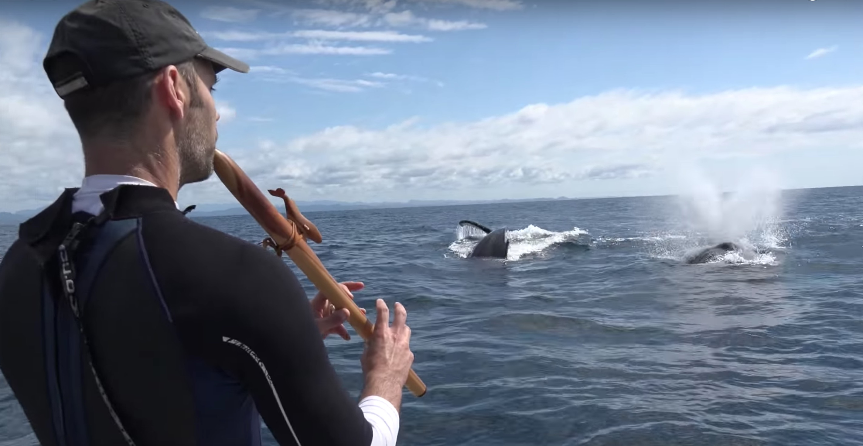 Singing with whales – Oh my God, how much magic can we possibly experience?
